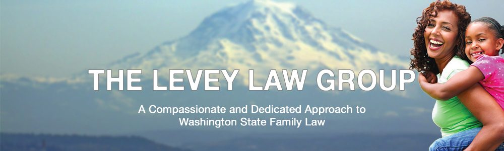 The Levey Law Group
